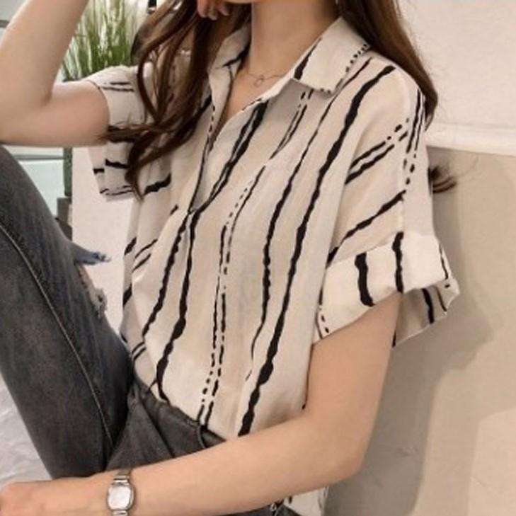 ストライプ柄コットン半袖エレガント一般なし一般夏折り襟プルオーバーシャツ・ブラウス